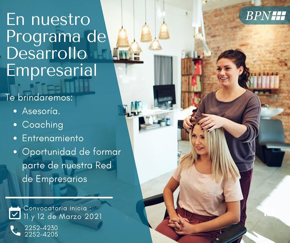 Read more about the article Programa de Desarrollo Empresarial.