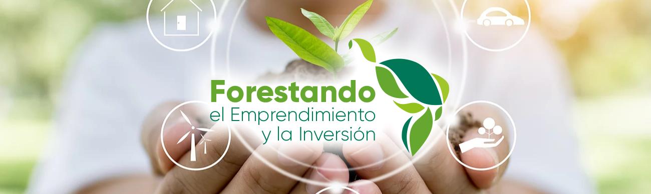 Read more about the article Desarrollo de Mercados.